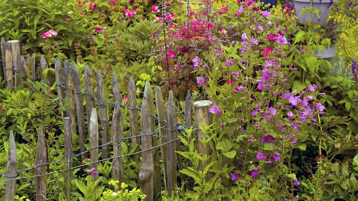 Bauerngarten mit Gartenzaun
