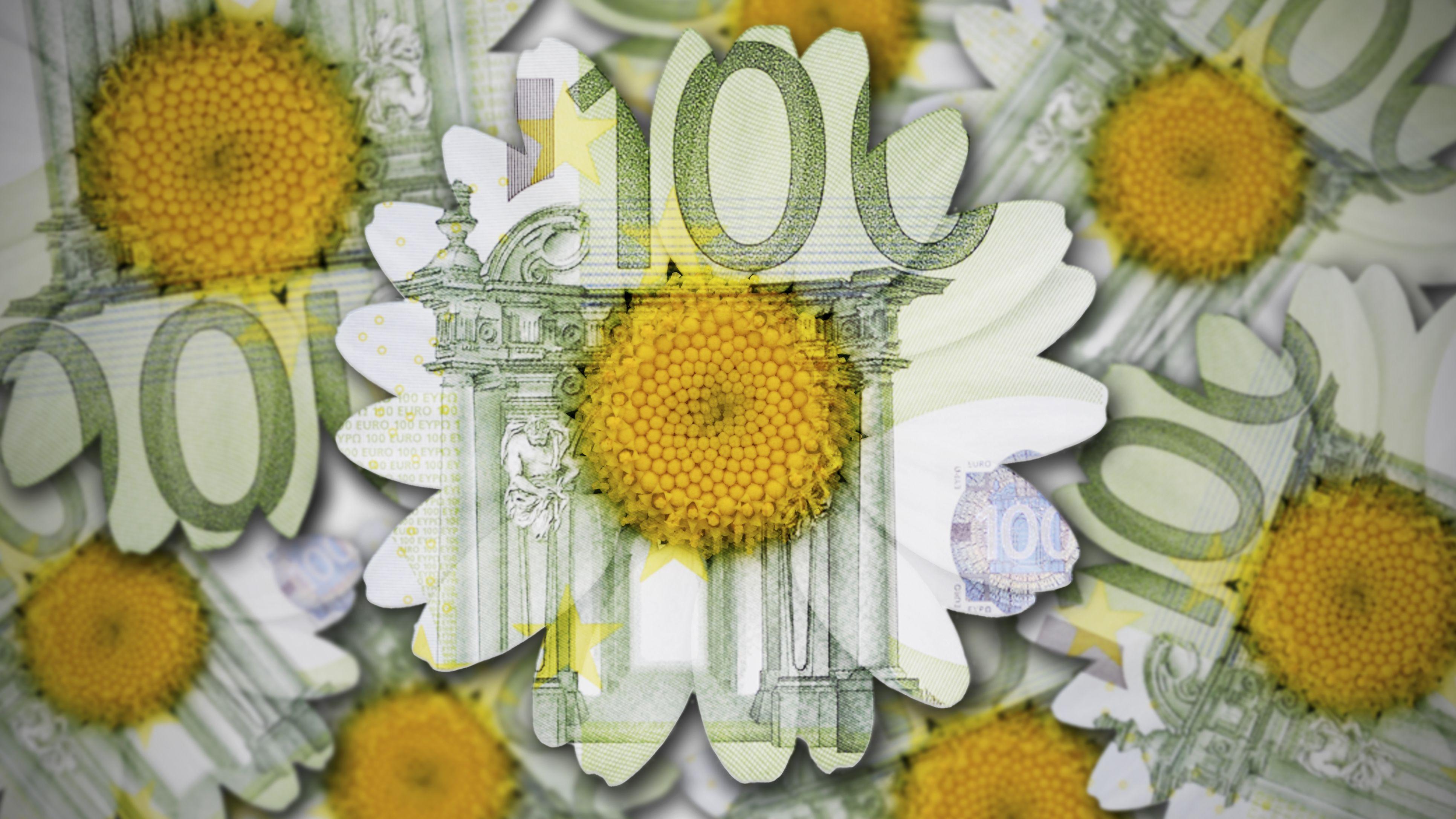 Blumen aus Hundert Euro Scheinen