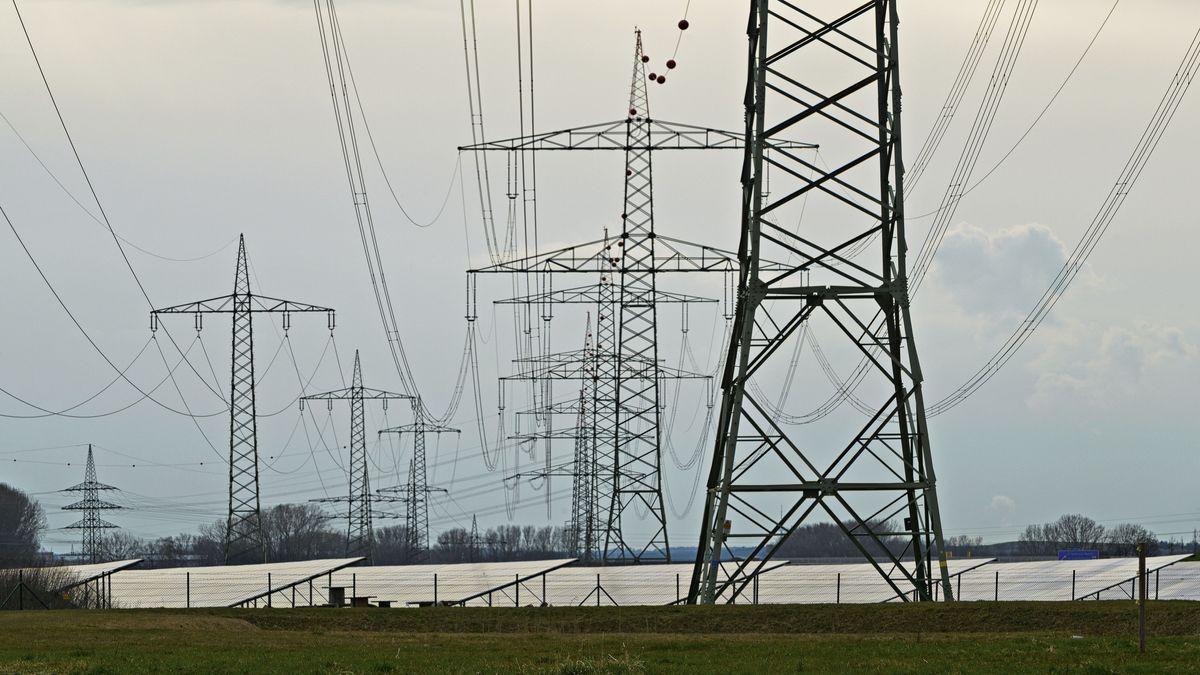 Stromleitungen auf einem Feld