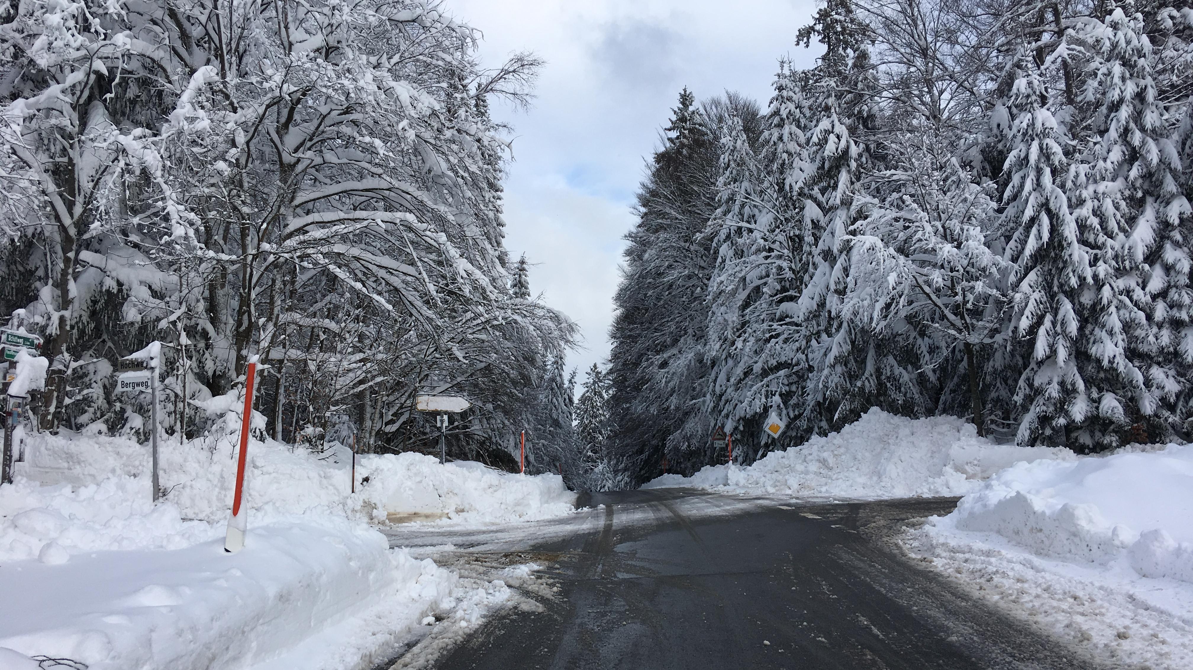 Im verschneiten Wald bei Schöfweg