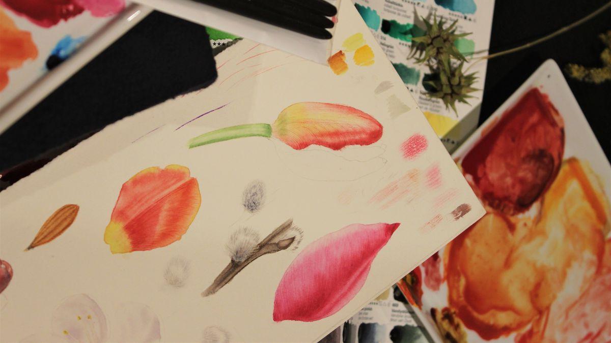 Farbige Zeichnungen von Blütenblättern