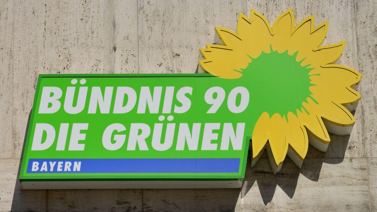 Logo der Grünen (Symboldbild)