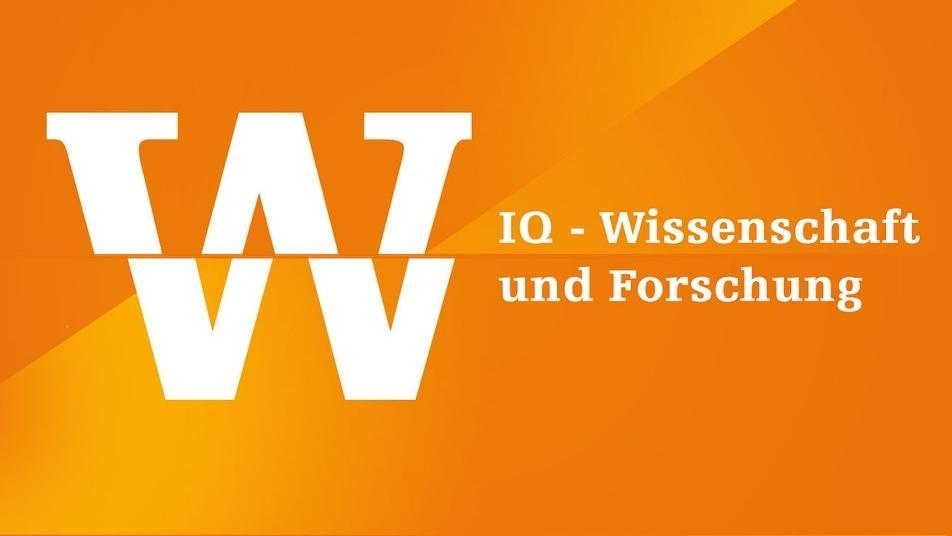 IQ Wissenschaft und Forschung Logo