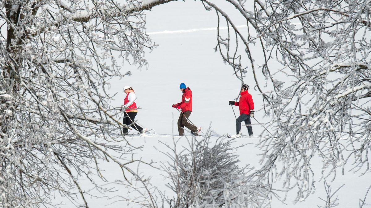 Schneeschuhwanderer sind nahe St. Englmar unterwegs