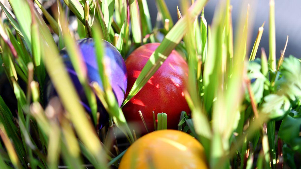 Bunt gefärbte Ostereier liegen im Gras