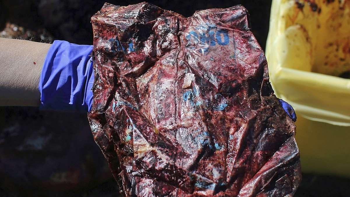 Anfang April ist ein Pottwal vor Sardinien entdeckt worden - mit 22 Kilogramm Plastik im Magen.