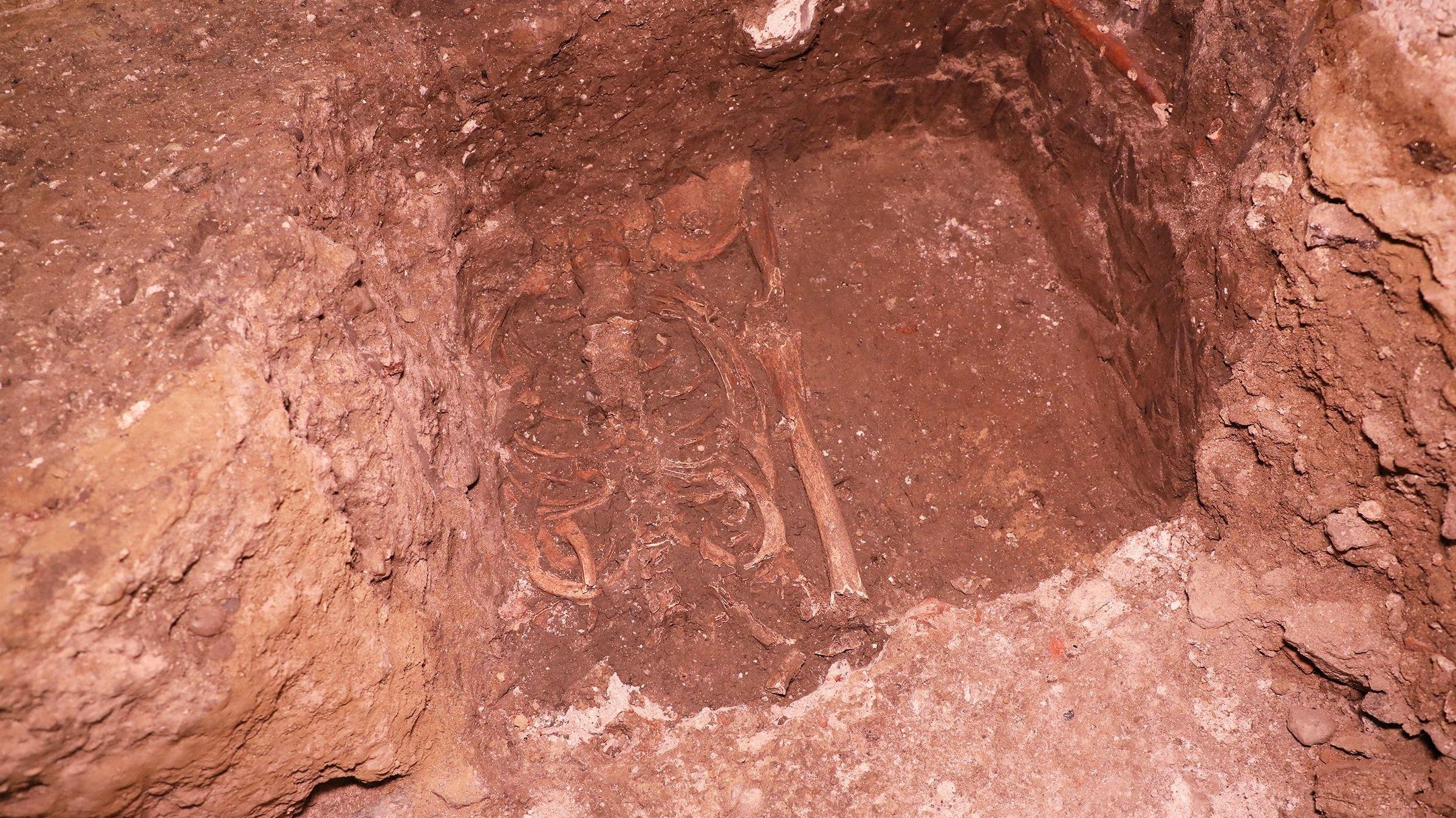 Das gefundene Skelett lag 1.000 Jahre 60 Zentimeter unter Bodenplatten am Eingang des Passauer Doms