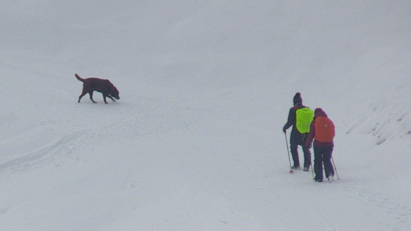 Winterwanderer im Oberallgäu