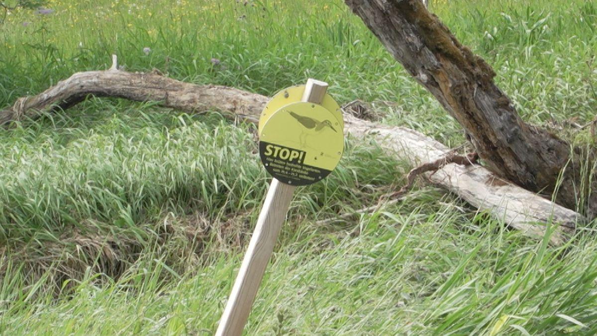 Stop! Hier brüten Vögel und Spaziergänger sollten sich fern halten.