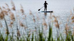 Stand-Up-Paddler und Zugvögel | Bild:picture alliance/Daniel Karmann/dpa