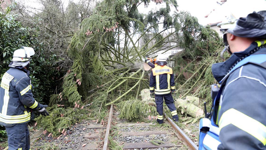 Sturmtief erreicht Bayern: Schäden und Zugausfälle