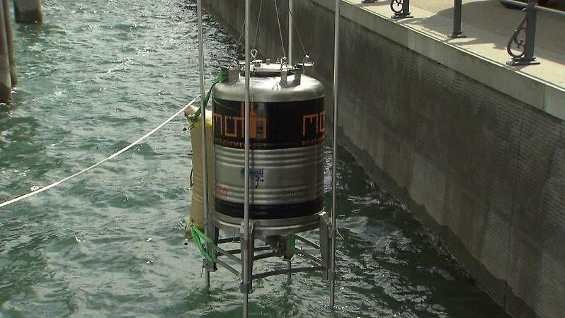 Der Winzer Josef Möth hat nach einem Jahr Lagerung ein 1.000-Liter-Fass Rotwein aus dem Bodensee heben lassen.
