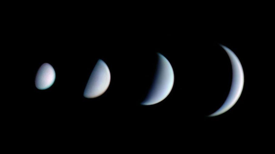 Die Phasen der Venus: Als innerer Planet durchwandert die Venus Phasen wie der Mond. Kurz bevor sie zwischen Erde und Sonne hindurch wandert, nimmt ihre Sichel immer weiter ab. Weil sie der Erde dabei zugleich näher kommt, wächst die Venus zugleich im Durchmesser (von oben nach unten gemessen).