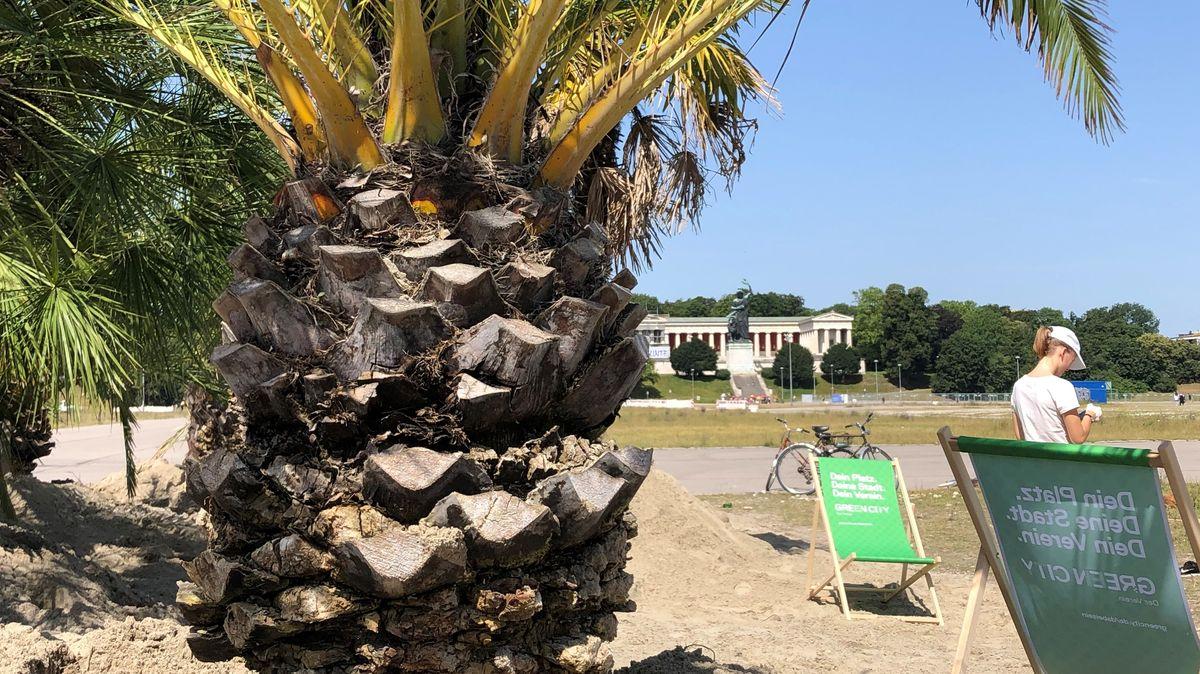 Greencity hat einen Palmengarten auf der Theresienwiese aufgebaut