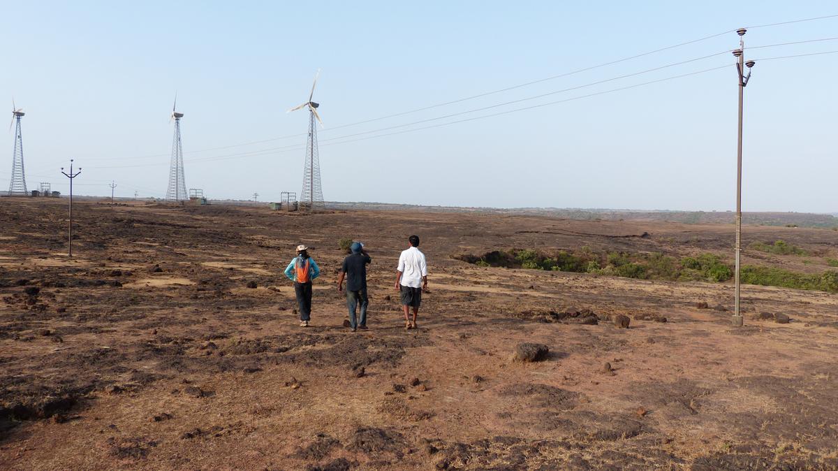 Feldforschung in den Westghats, Indien