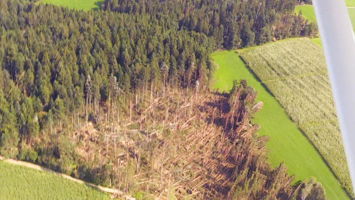 """Vor drei Jahren richtete ein Jahrhundert-Sturm in Niederbayern gewaltige Schäden an: """"Kolle"""" zerstörte in wenigen Minuten das Lebenswerk vieler Waldbauern. Viele Flächen wurden regelrecht niedergemäht."""