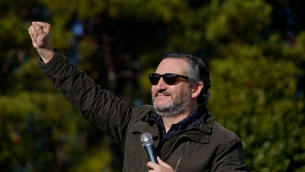 Der texanische Senator Ted Cruz streckt seine Faust in die Luft.
