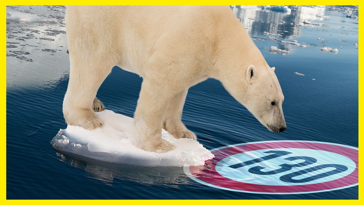 Ein Eisbär auf einer Eisscholle, die im Meer treibt. Der Eisbär schaut ins Wasser, dort ist ein Höchstgeschwindigkeitsverkehrsschild mit 130 zu erkennen.