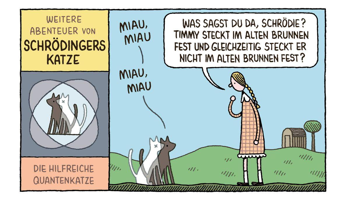 Ein Comic von Tom Gauld über Schrödingers Katze.