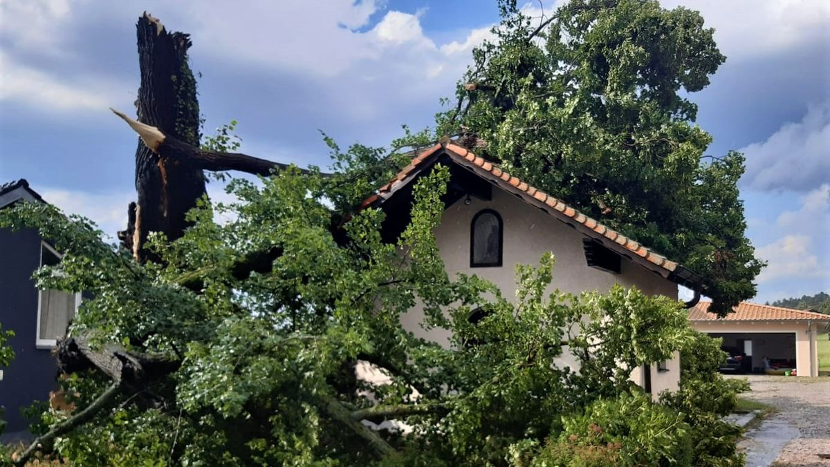 Im Raum Cham und besondern in Traitsching wütete das Unwetter besonders schlimm - hier sind Bäume auf Gebäude umgeknickt.