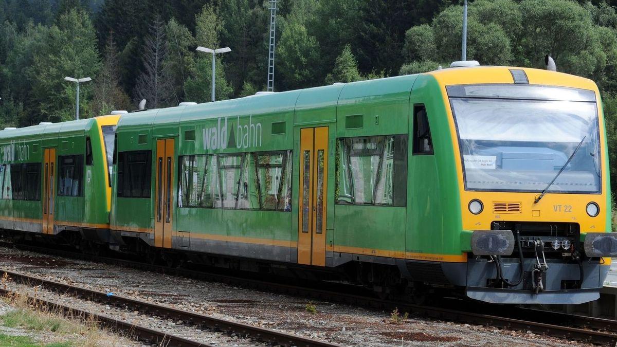 Ein Zug der Waldbahn