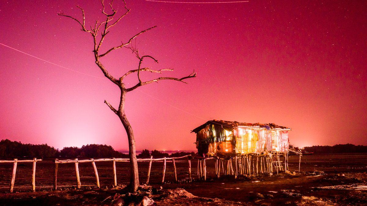 Holzhütte auf Stelzen neben einem vertrockneten Baum vor feuerrotem Himmel