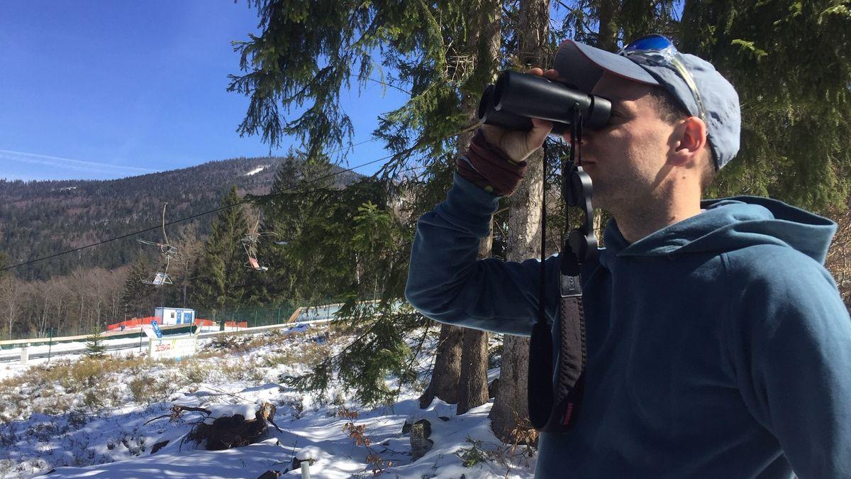 Arbergebietsbetreuer Johannes Matt schaut an einer geschlossenen Skipiste nach Wildtieren