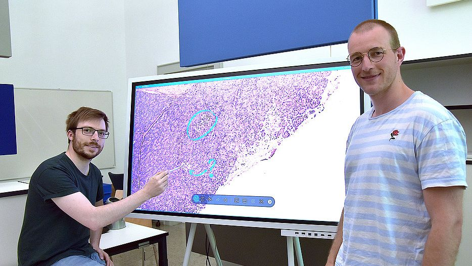"""Philipp Sodmann (links) und Matthias Griebel vor einem Bildschirm mit ihrem digitalen Tool """"deepflash2"""", das mikroskopische Bilder auswerten kann."""