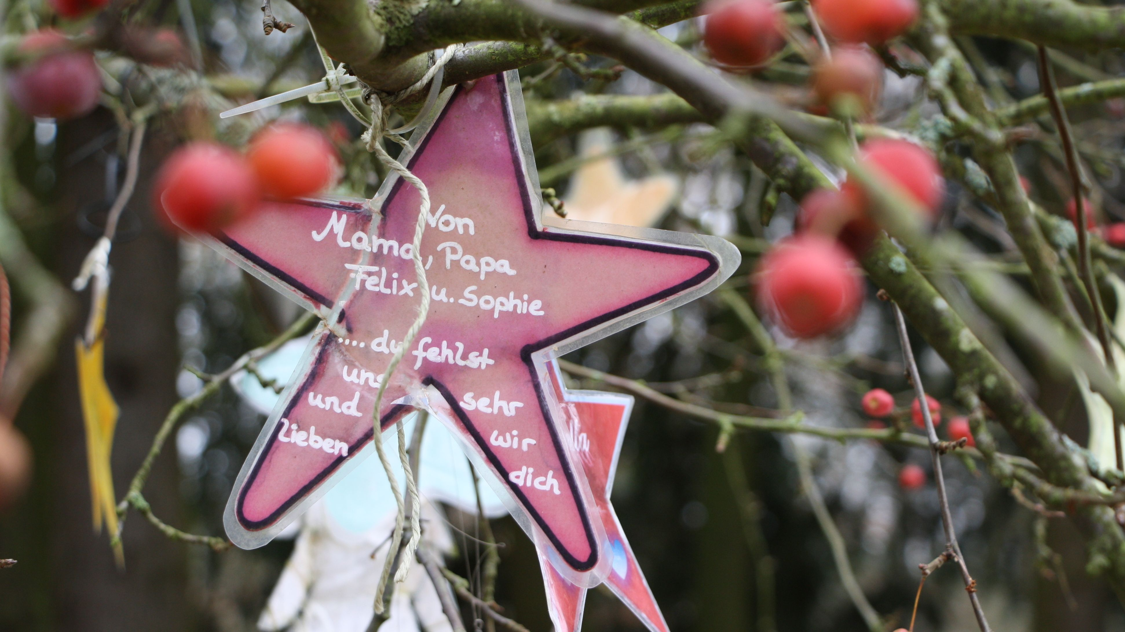 Ein Stern zur Erinnerung an ein verstorbenes Kind