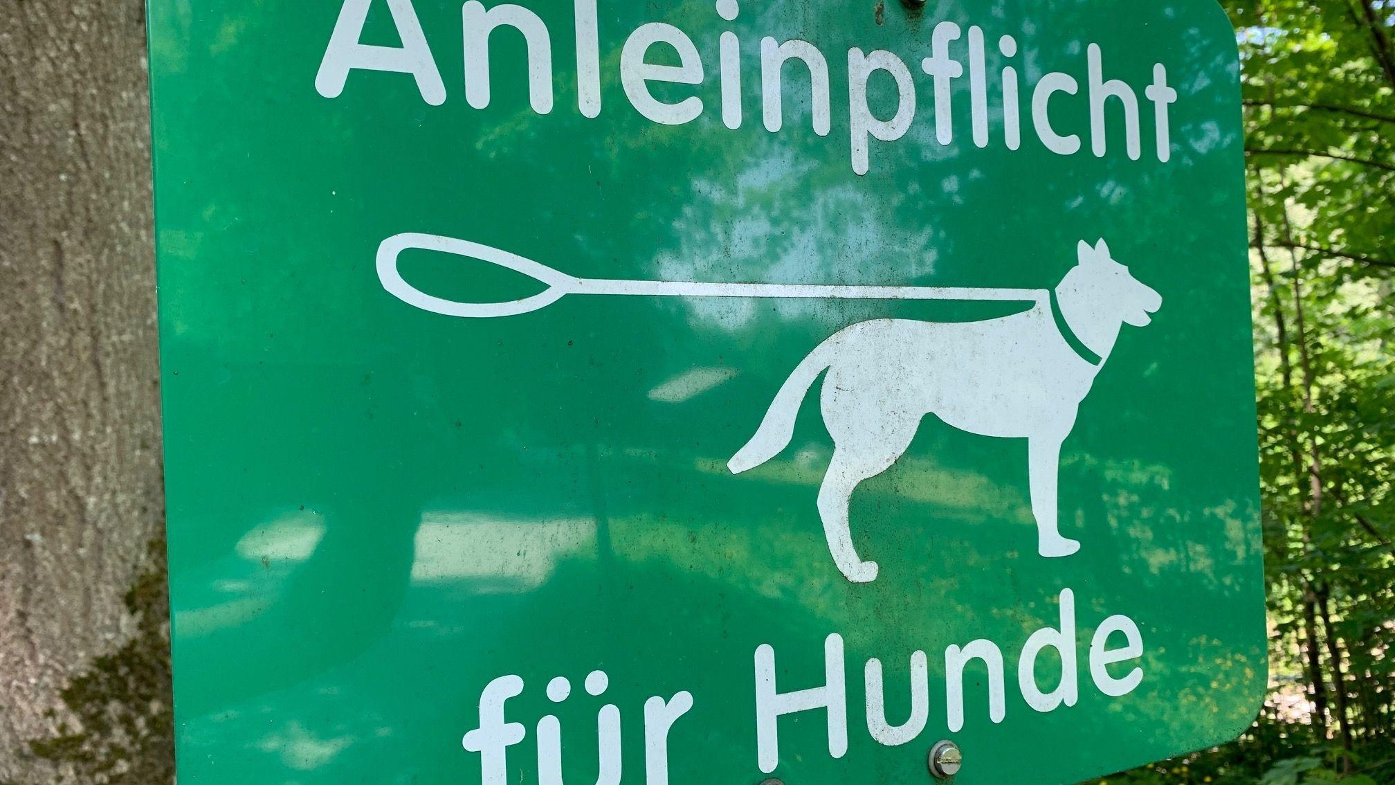 Hinweis-Schild Leinenpflicht für Hunde