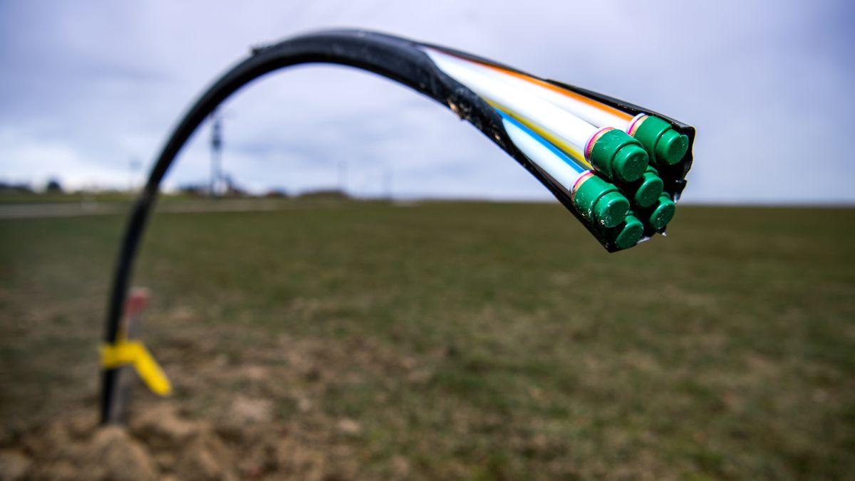 Ein Kabel ragt aus einem Acker