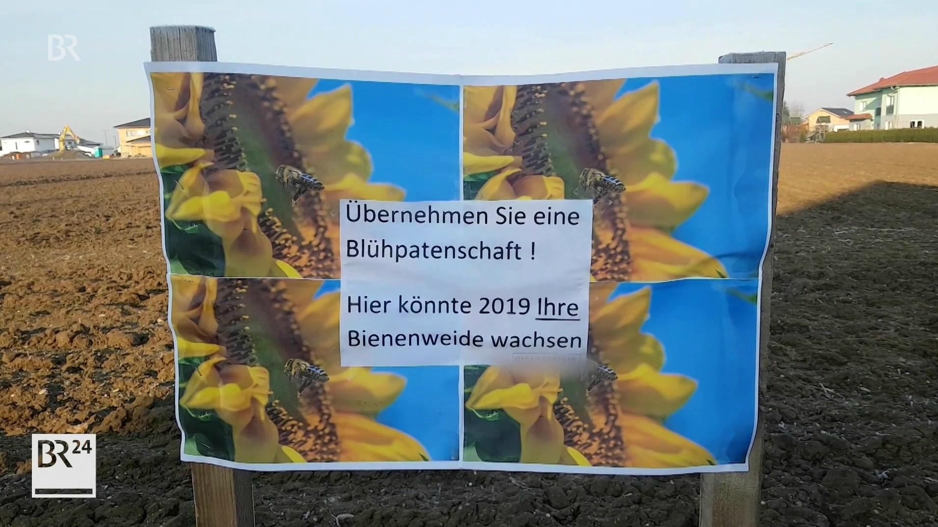 In Rain im Landkreis Straubing-Bogen werden Blühpaten für ein Feld gesucht