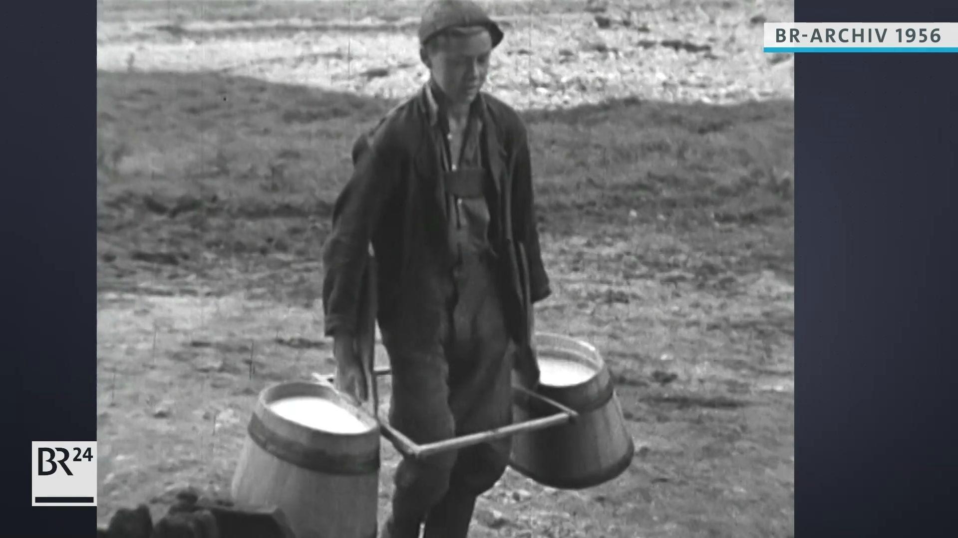 Junge beim Transportieren von frischer Milch mit einem Tragegestell