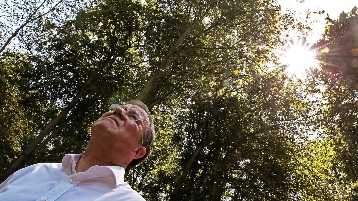 NRW Ministerpräsident Armin Laschet (CDU) steht im Wald.