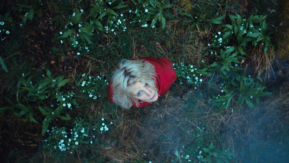 "Szenen-Bild aus ""Hunted - Waldsterben"""
