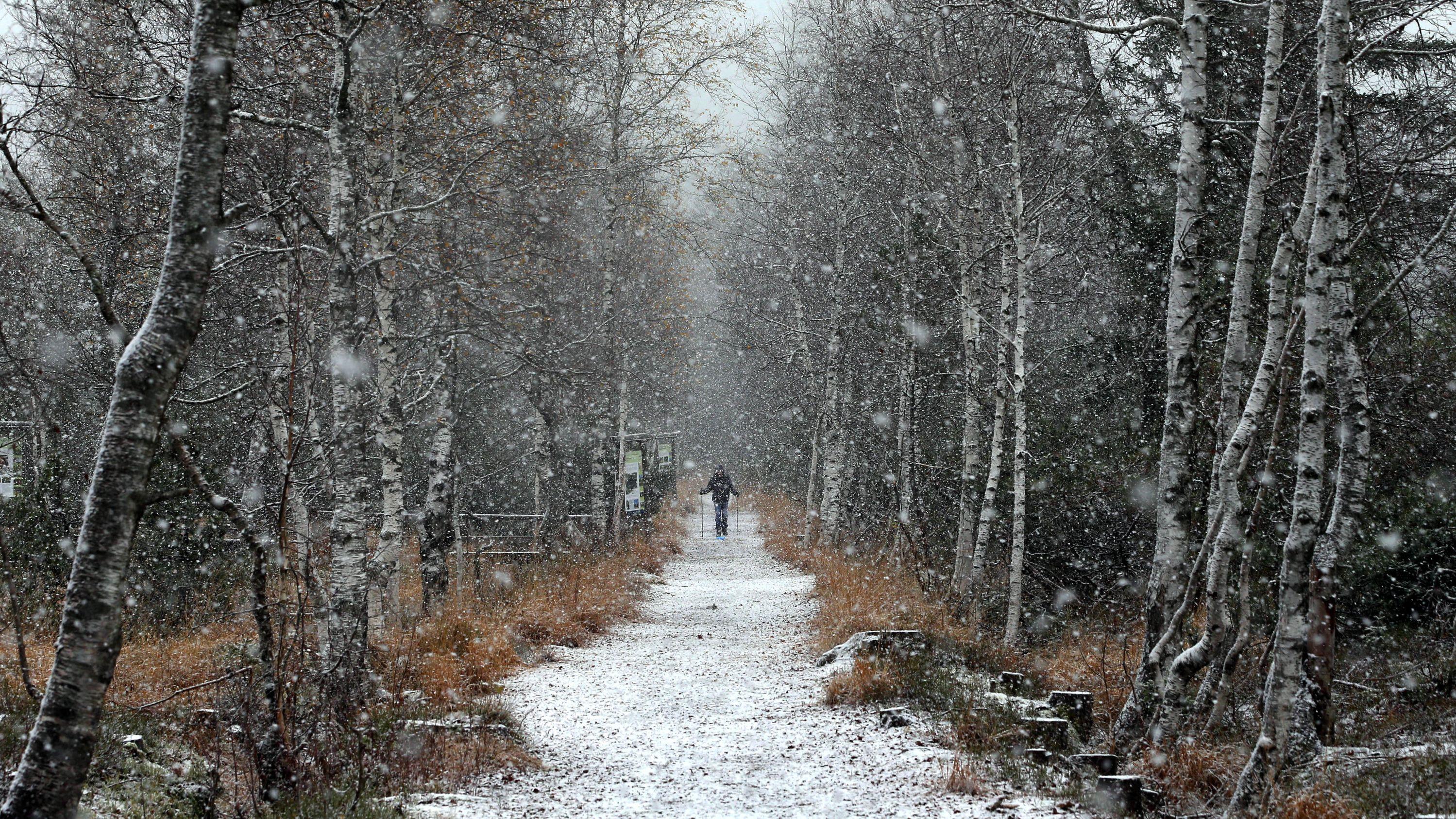Ein Mann läuft im Schneetreiben durch das Hochmoor Kematsriedmoos. (Foto aufgenommen am 9. November 2019 in Oberjoch, Bayern)