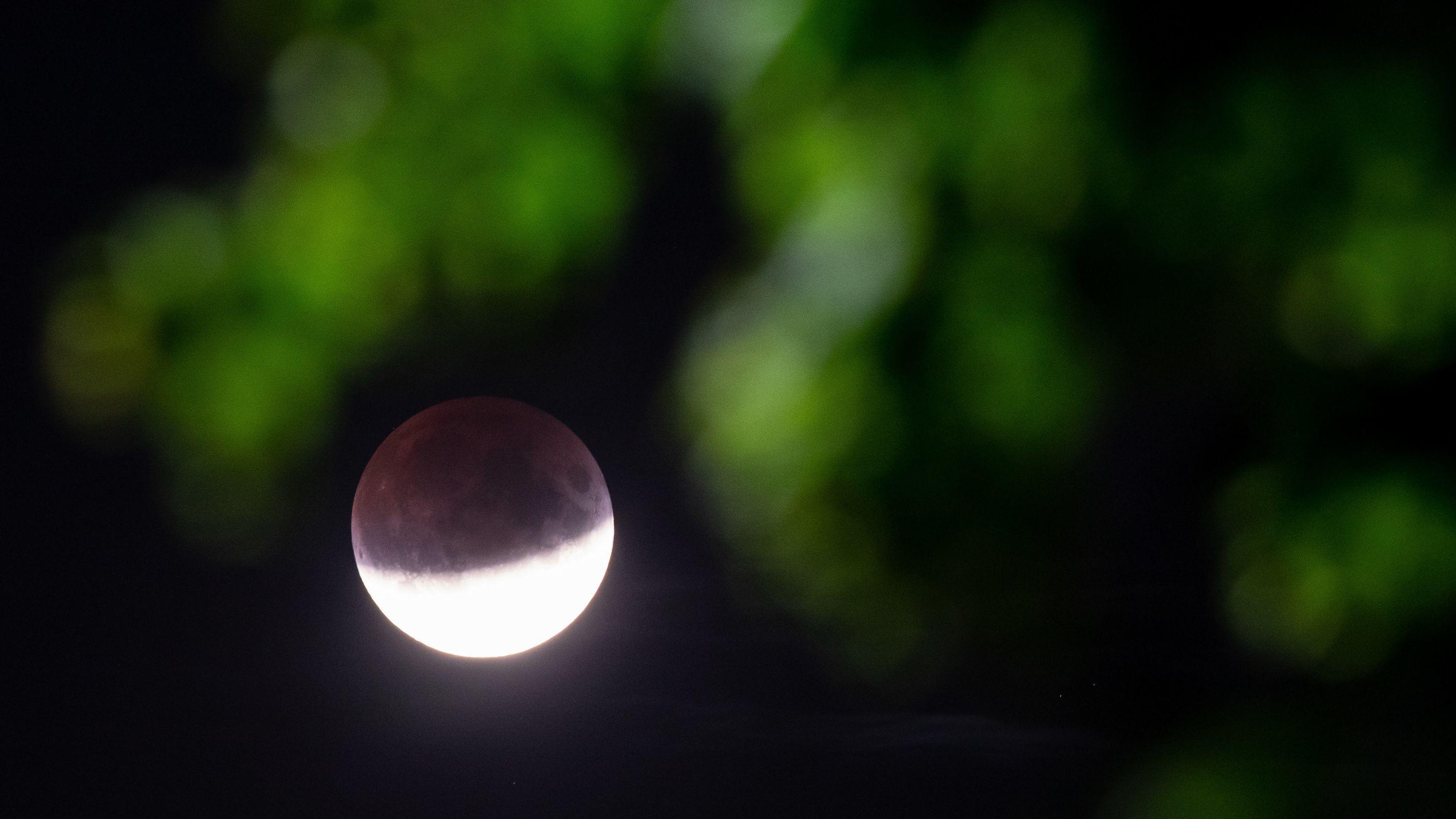 Recklinghausen: Der Mond ist während einer partiellen Mondfinsternis hinter einem Ast mit Blättern zu sehen.