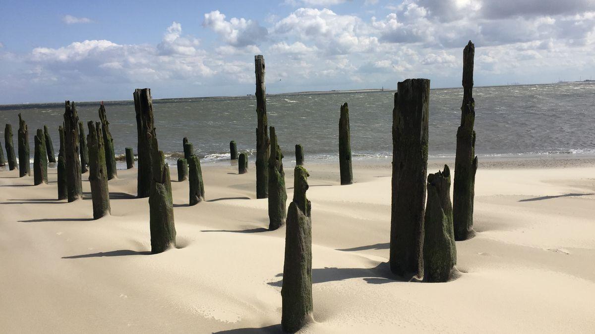 Holzpfähle in der Nordsee im Grenzgebiet zwischen offener See und Wattenmeer Ostfriesland