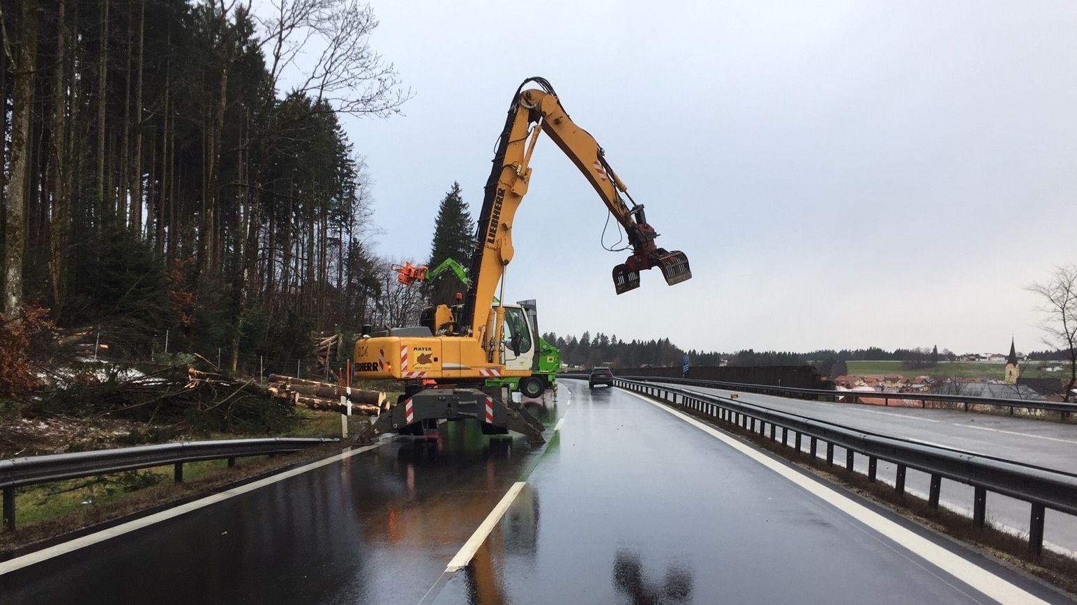 Baumfällarbeiten auf der A8 zwischen München und Salzburg
