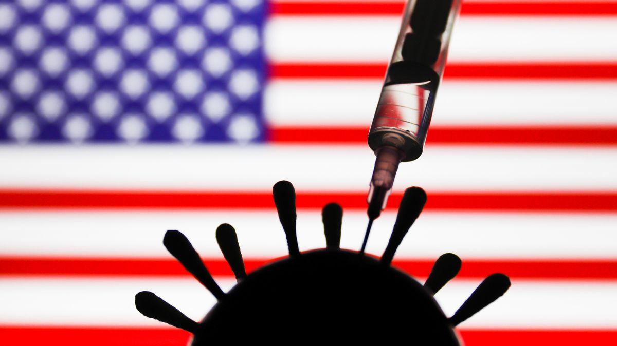 Symbolbild: Eine Spritze und eine Virus-Plastik vor einer Flagge der USA