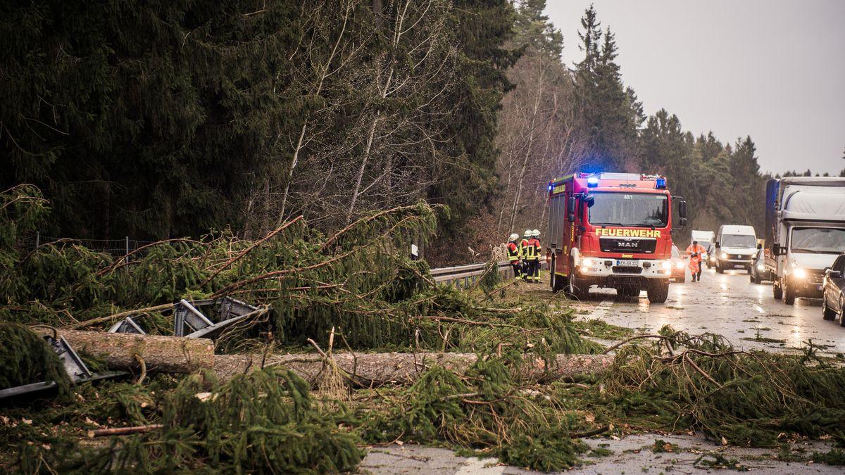 Auf der A93 in Richtung München bei Mainburg sind mehrere entwurzelte Bäume auf die Fahrbahn gestürzt. Der Autobahn in Richtung Süden wurde gesperrt und der Verkehr wird abgeleitet.