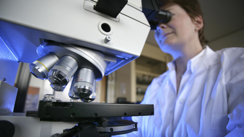 Eine Frau schaut in ein Mikroskop.