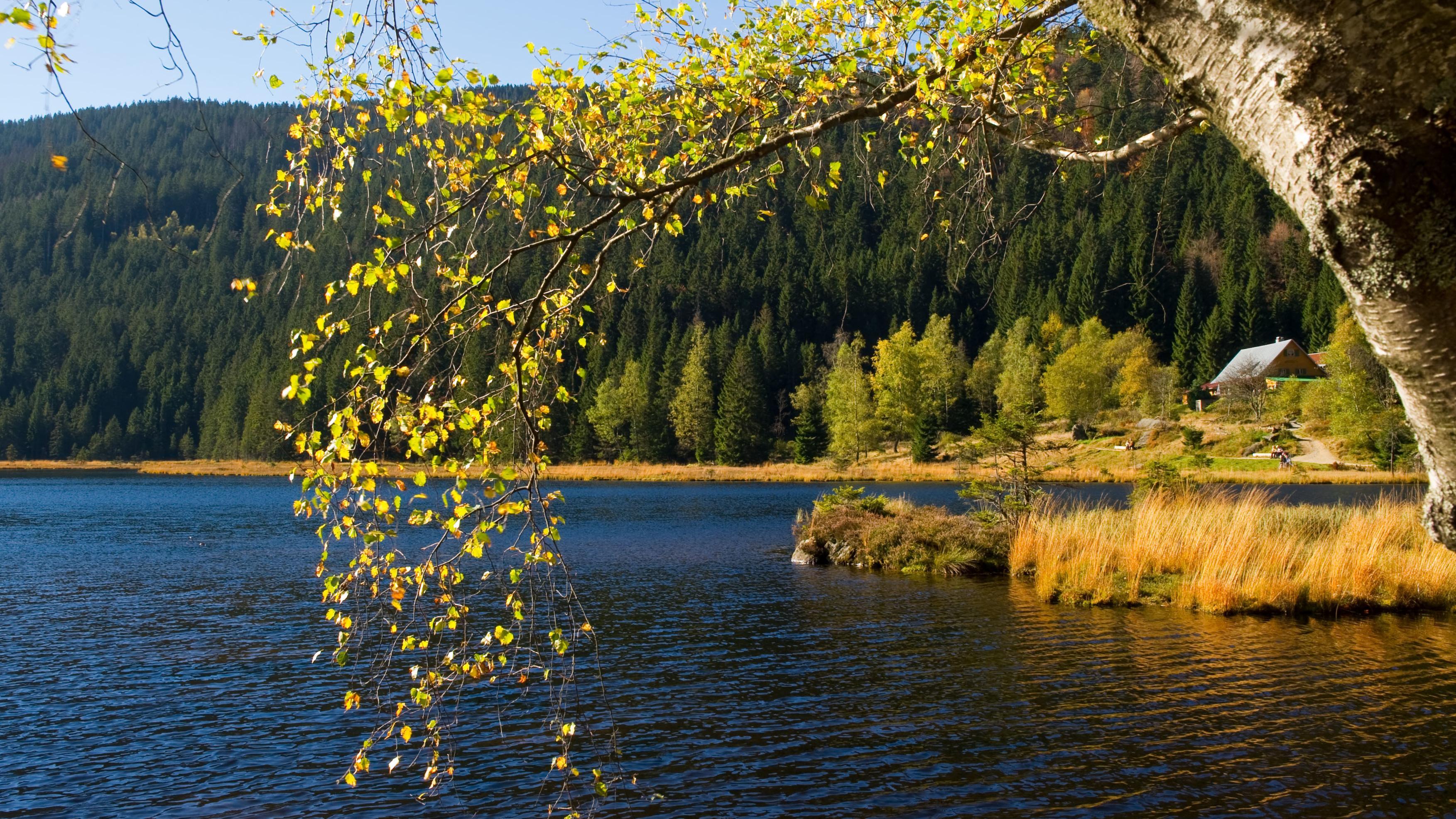 Der Kleine Arbersee fünf Kilometer südlich des Ortes Arber sowie auf dem Gebiet der Gemeinde Lohberg ist einer von drei Karseen des Bayerischen Waldes, aufgenommen am 14.10.2010.