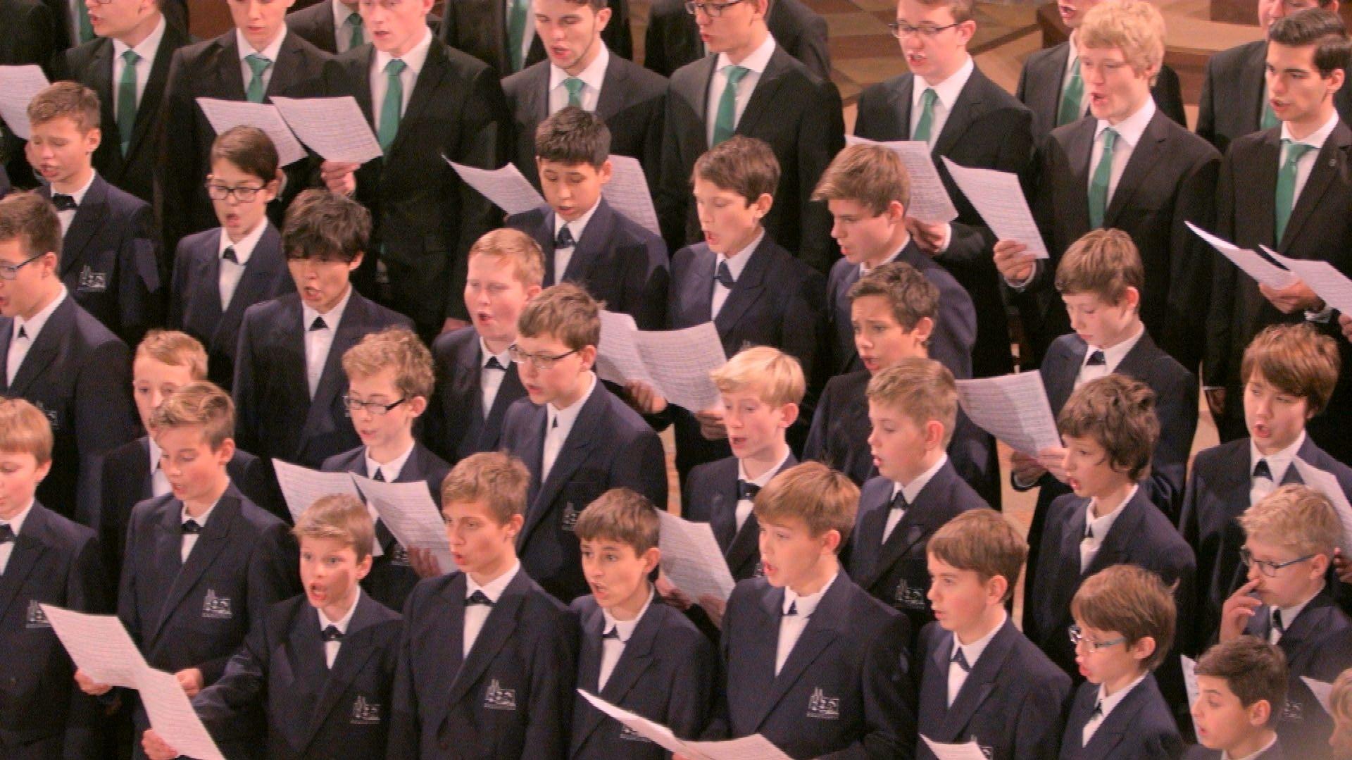 Die Regensburger Domspatzen