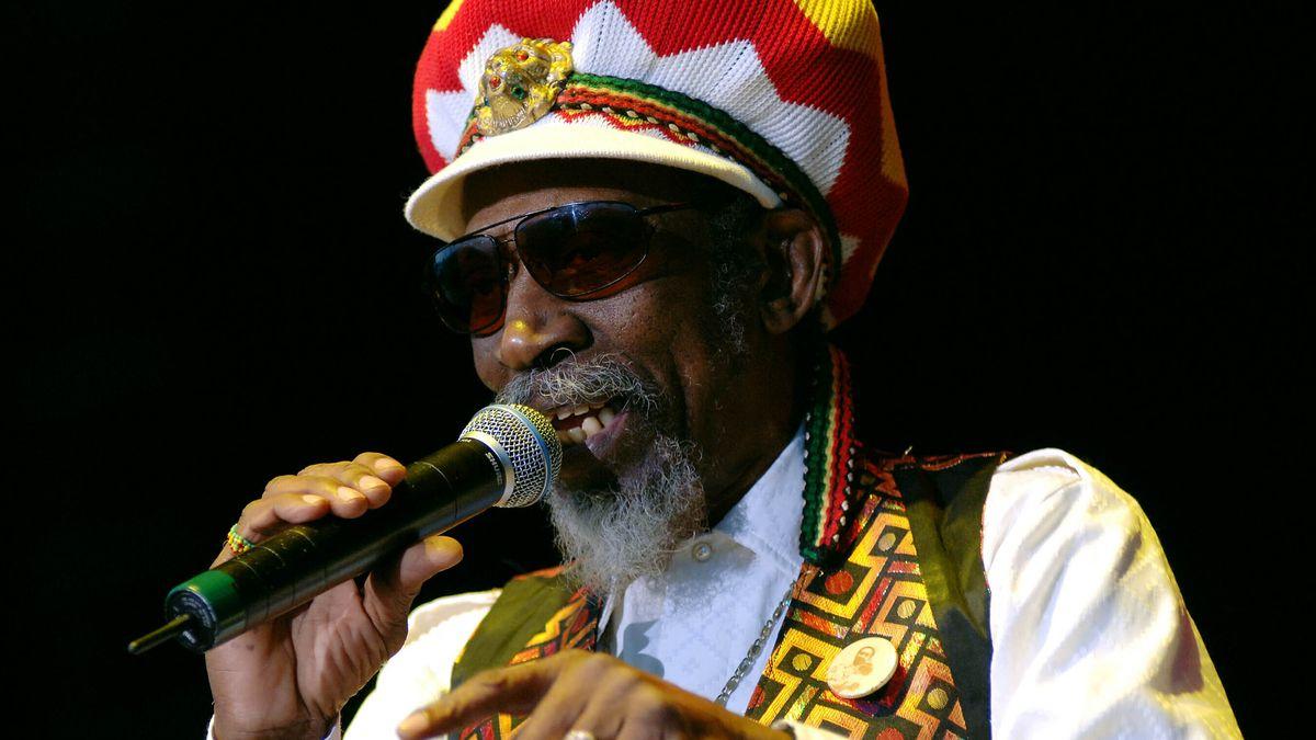 Der Musiker mit Mikrofon und Rasta-Look