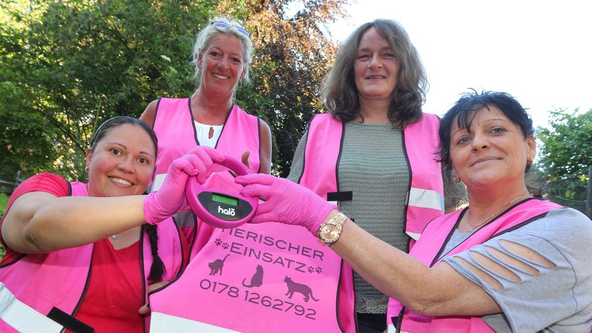 """Gruppe von vier der """"Pink Ladies"""" in leuchtend pinken Warnwesten halten Chip-Lesegerät in die Kamera"""