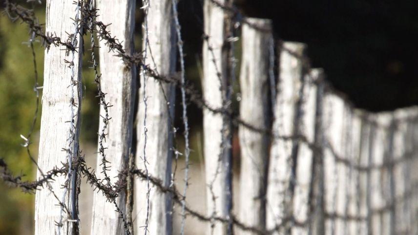 Zaun an der ehemaligen Grenze zur DDR
