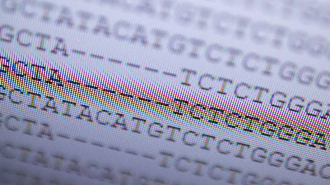 ARCHIV - 03.02.2021, Baden-Württemberg, Stuttgart: Auf einem Computerbildschirm im Landesgesundheitsamt Baden-Württemberg wird die DNA-Analyse eines mutierten Coronavirus in der Variante, die zuerst in Großbritannien aufgetreten ist, angezeigt. Die Stelle der Veränderung im Viruserbgut wird durch die Stiche markiert. (zu dpa: «Das neue Corona-Schreckgespenst: Viren immun gegen das Impfen?») Foto: Sebastian Gollnow/dpa +++ dpa-Bildfunk +++