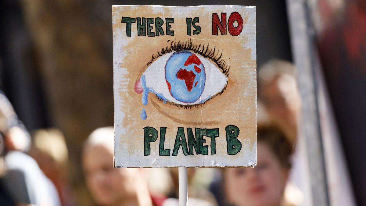 """Plakat bei einer """"Fridays for Future""""-Demonstration"""