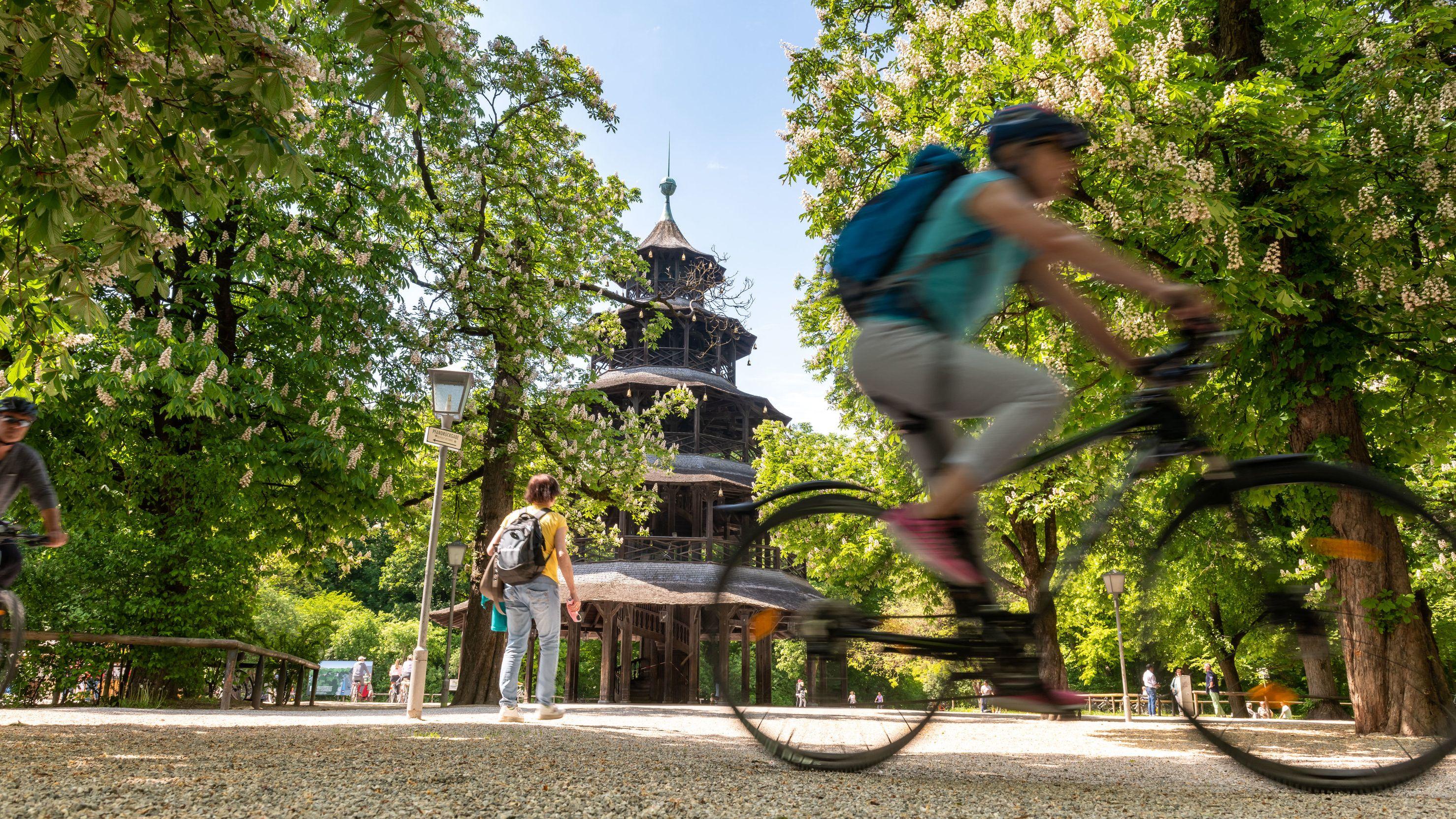 Blühende Kastanienbäume umrahmen den Chinesischen Turm im Englischen Garten, ein Fahrradfahrer kreuzt
